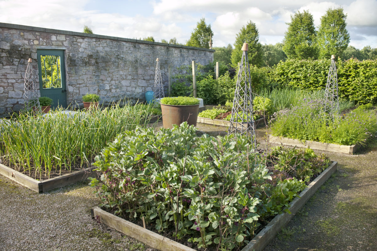 Broadwoodside The Kitchen Garden Photo Andrea Jones